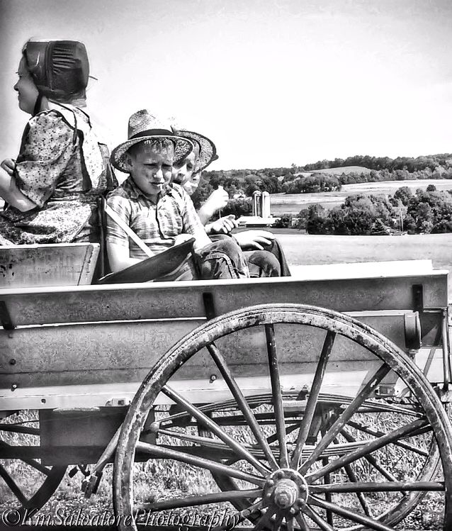 and its always a safe bet we will see  a few horse and buggies  as we travel through the  Amish Community